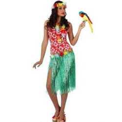 Déguisement Hawaïenne femme taille M-L Déguisements 10096