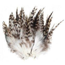 Sachet 20 plumes blanc gris noir Déco festive 0721