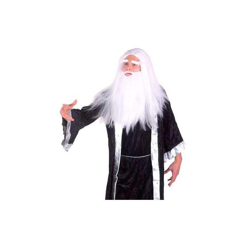Perruque Magicien Merlin Accessoires de fête 71803