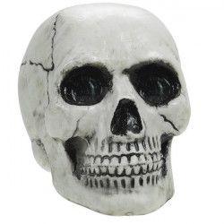 Tête de mort plastique 12 cm Déco festive 670458-55