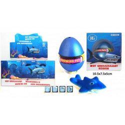 Requin grossissant 6 cm kermesse vendu par 12 Jouets et kermesse 11652-LOT