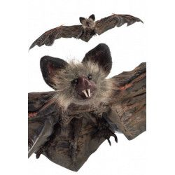 Déco festive, Chauve-souris Halloween 60 cm à suspendre, 09155, 12,50€