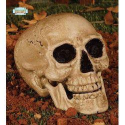 Tête de mort déco halloween Déco festive 19752