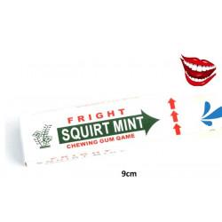 Chewing gum farce lance eau vendu par 48 Accessoires de fête 12048-LOT