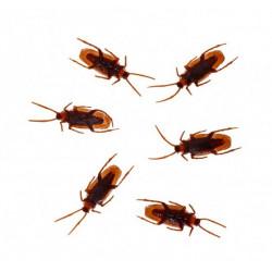 Lot 12 blattes plastique marron Déco festive 11044CHAKS