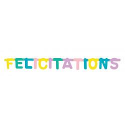 Guirlande carton pastel 115 cm - Félicitations Déco festive 33337