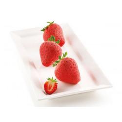 Moule silicone 3D 6 fraises Fragole e Panna Silikomart Cake Design 26.267.13.0065
