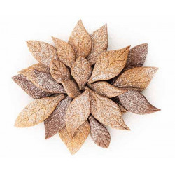 Emporte-pièces 24 feuilles Voilà Cookie Leaves Silikomart Cake Design 53.151.20.0065