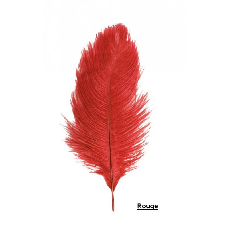Sachet 2 plumes autruche 30-35 cm Déco festive 0718-