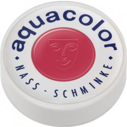 Fard Aquacolor 30 ml Rose Accessoires de fête 01102-R21