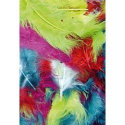 Sachet de plumes multicolores Accessoires de fête 702
