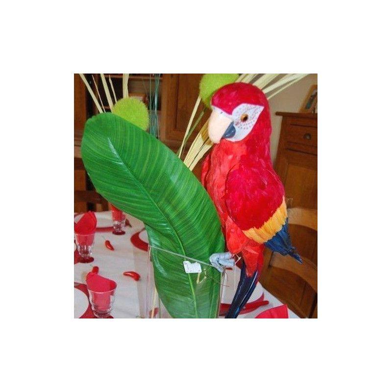 Perroquet de décoration multicolore 63 cm Déco festive 80070CHAKS