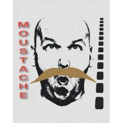 Moustache blonde de bandit Accessoires de fête 8300017