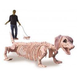 Squelette de teckel 55 cm déco halloween Déco festive 90246