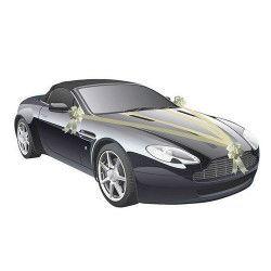 Kit de voiture 5 pièces ivoire mariage Déco festive 1401-01