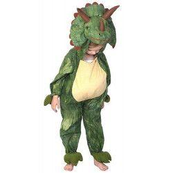 Déguisement dinosaure enfant 4 ans Déguisements C1051116