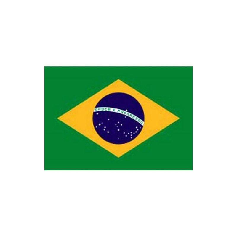 Pavillon Brésil 150 x 90 cm Déco festive GU46006