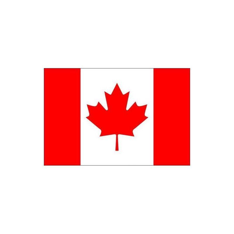 Lot 10 drapeaux canadiens grand modèle Déco festive 14560CA