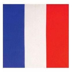 Bandana drapeau France Accessoires de fête LP00127