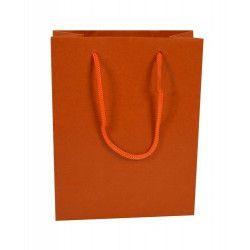 Sachet cadeau en carton coloré 18 cm Divers 14892