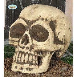 Tête de mort Day of the Dead Déco festive 26278