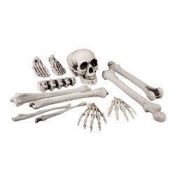 Set 12 pièces tête de mort et os Déco festive 74391