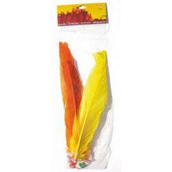 Bandeau indien 2 plumes Accessoires de fête 8522