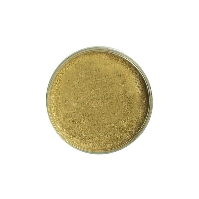 Maquillage or texture mousse 15 g Accessoires de fête 15688